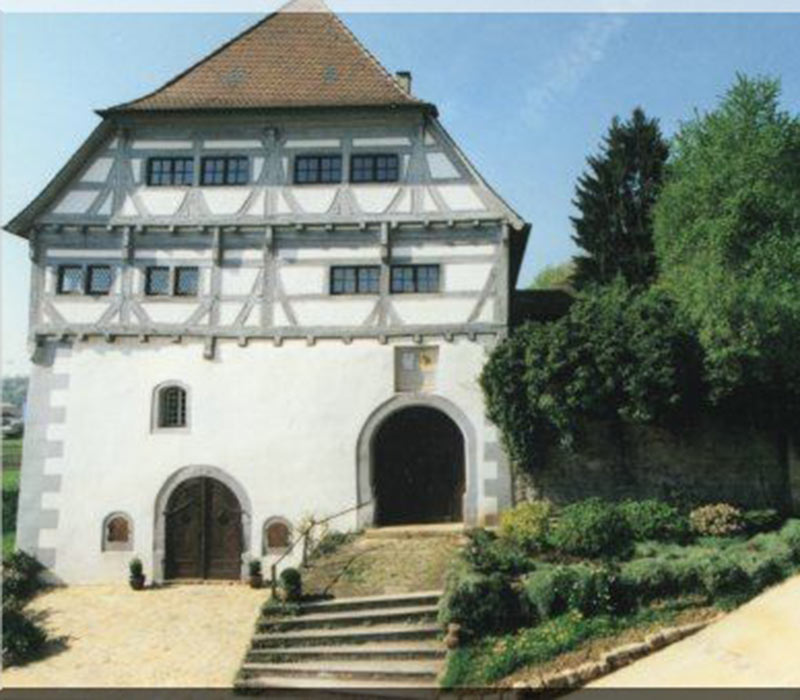 Neckarburg